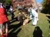 Blessing of the Animals 2014 2014-10-05 015